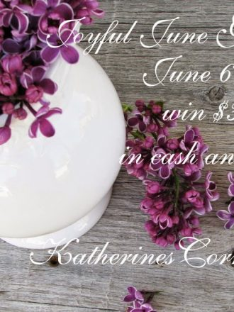Joyful June Giveaway {with $300 in Prizes}!