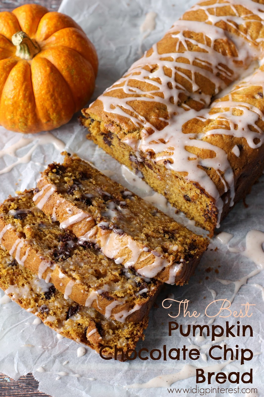 The Best Pumpkin Chocolate Chip Bread - I Dig Pinterest