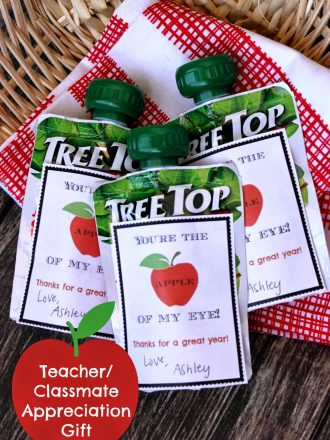 Apple Teacher or Classmate Appreciation Gift with Free Printable & a Giveaway!