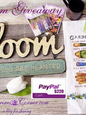 $220 PayPal Cash Bloom Giveaway