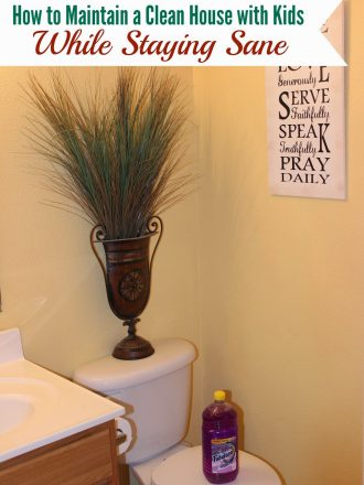 """Tips for Keeping a """"Sanely"""" Clean House with Kids"""