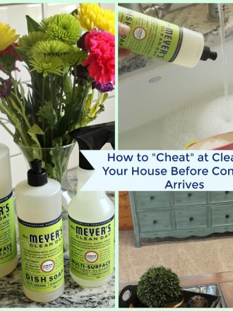 cheat-at-cleaning-your-house-collage
