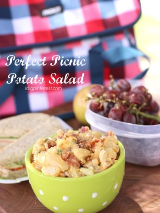 Perfect Picnic Potato Salad and My Favorite Way to Tote It